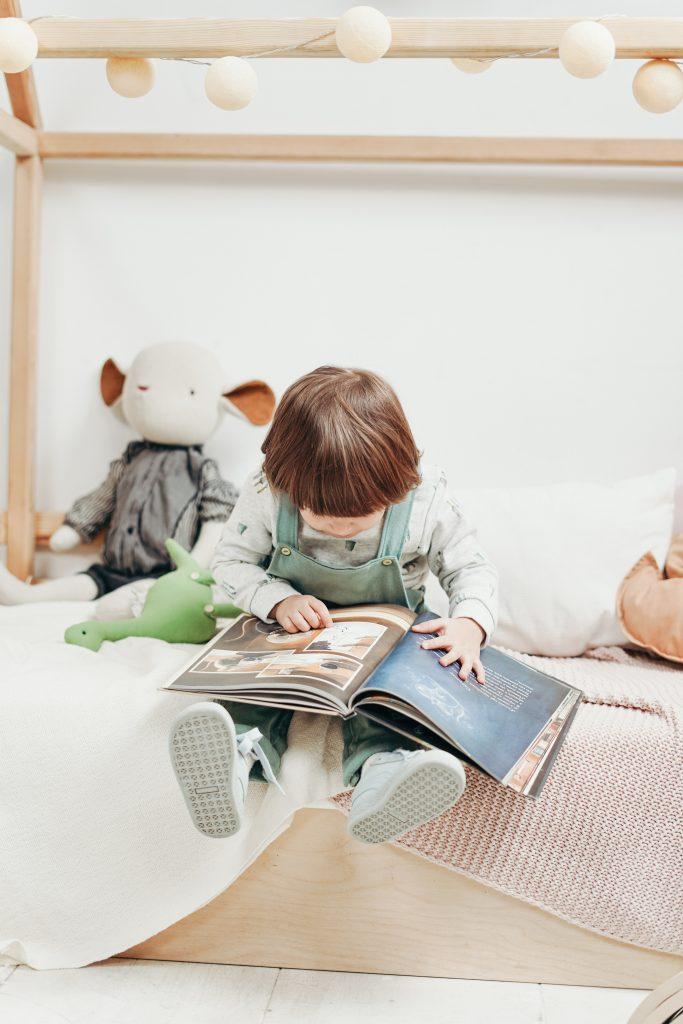 Ukucela- Tips- Lectura- Habito- Libros- Libreros- Entretenimiento- Ukucelea (3)