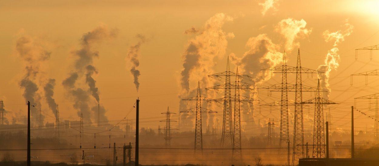 ¡Actuemos Contra El Cambio Climático!