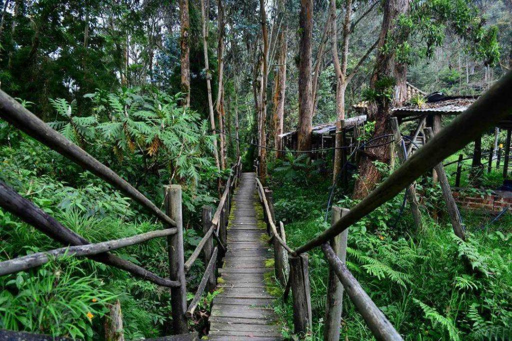 Lugares- Ideales- Colombia- Hogar- Calido- Ukucela- Hogar- Inmuebles (9)